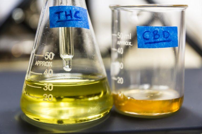 Cannabisolie En Het Immuunsysteem