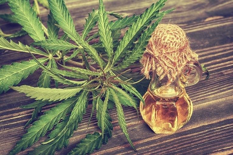 Cannabis Social Club Gent