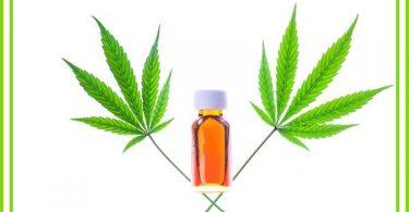 Bang voor THC-olie