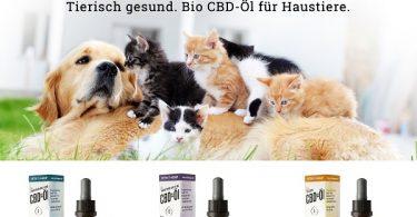 Vetrihemp CBD-olie voor dieren