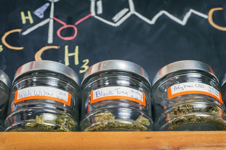 Indica THC Olie